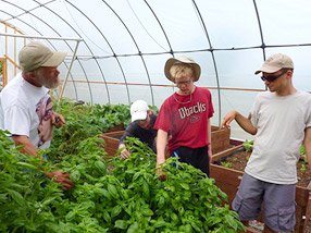 Community Supported Agriculture at Echoing Hope Ranch